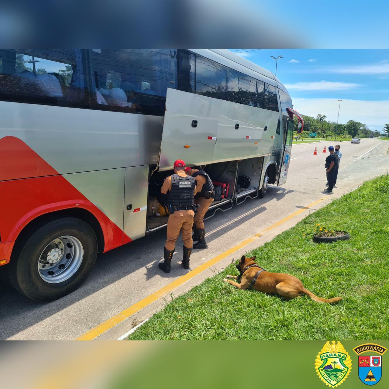 Polícia Rodoviária Estadual intensifica abordagens com cães farejadores nas estradas do litoral
