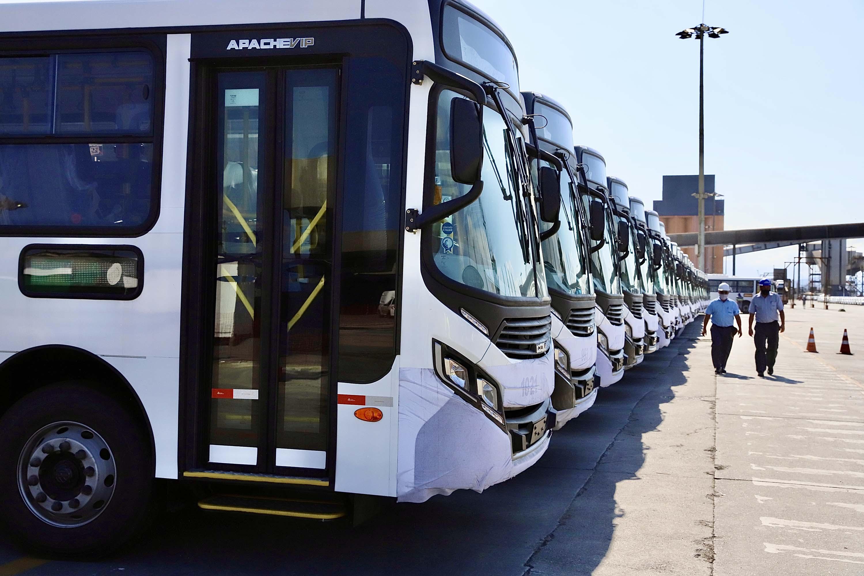 Porto de Paranaguá embarca mais 157 ônibus em único lote e bate novo recorde