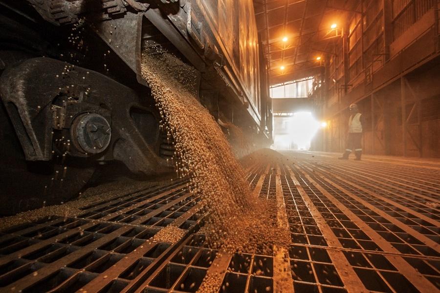 Nova safra de soja começa a ser exportada por Paranaguá