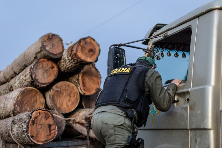 Documento de Origem Florestal (DOF) será bloqueado no Pará e Mato Grosso